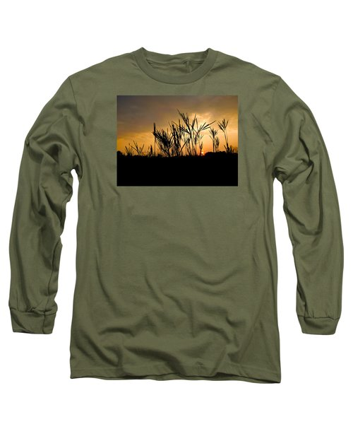 Peeking Out Long Sleeve T-Shirt by Tim Good