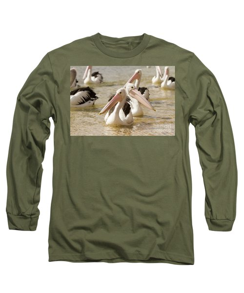 Pelicans Long Sleeve T-Shirt by Craig Dingle