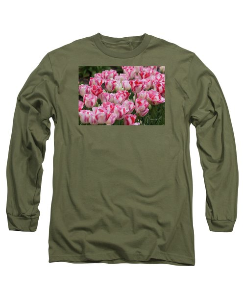Peppermint Tulip Field IIi Long Sleeve T-Shirt