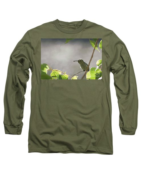 Long Sleeve T-Shirt featuring the photograph Perched Hummer by Anne Rodkin