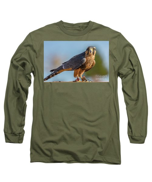 Peregrine Falcon Wildlife Art By Kaylyn Franks Long Sleeve T-Shirt