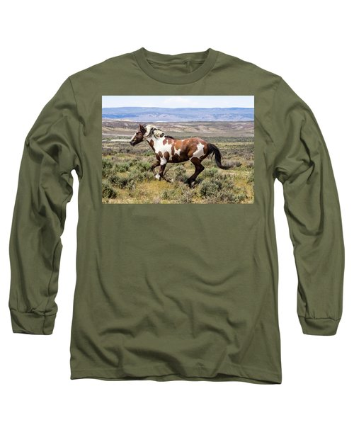 Picasso - Free As The Wind Long Sleeve T-Shirt