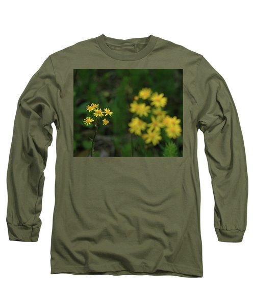 Long Sleeve T-Shirt featuring the photograph Pick Me Daisies by LeeAnn McLaneGoetz McLaneGoetzStudioLLCcom
