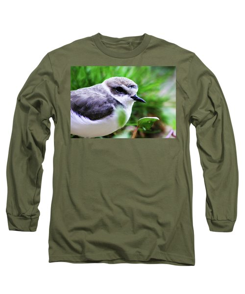 Long Sleeve T-Shirt featuring the photograph Piping Plover by Anthony Jones