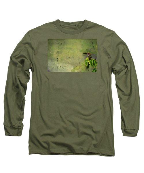 Plate 087 - Hummingbird Grunge Series Long Sleeve T-Shirt