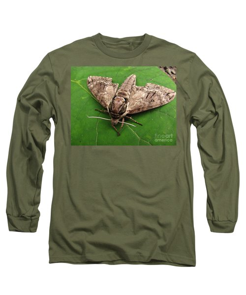Plebeian Sphinx Moth Long Sleeve T-Shirt