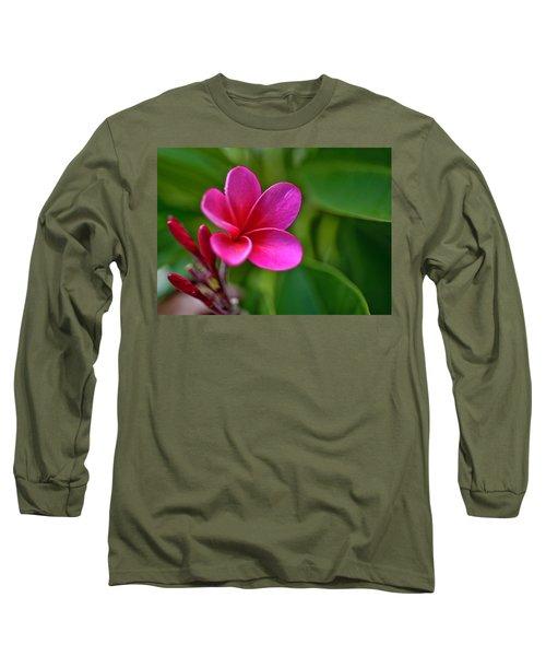 Plumeria - Royal Hawaiian Long Sleeve T-Shirt