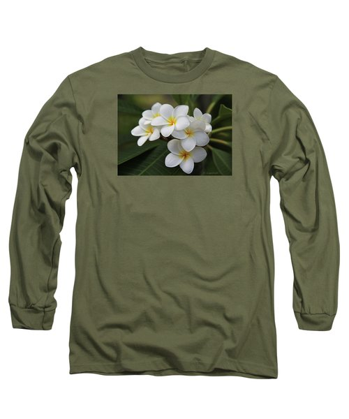 Plumeria - Golden Hearts Long Sleeve T-Shirt by Kerri Ligatich