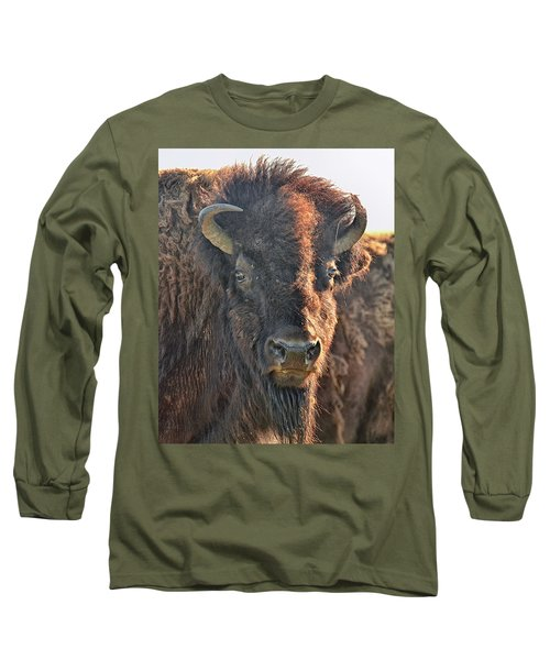 Portrait Of A Buffalo Long Sleeve T-Shirt by Nancy Landry