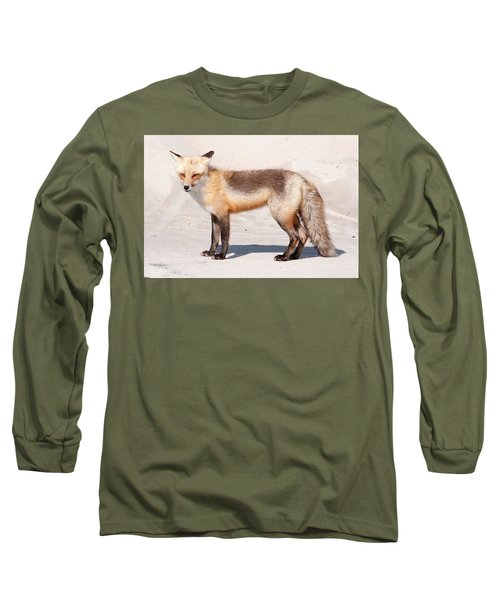 Portrait Of A Red Fox Long Sleeve T-Shirt