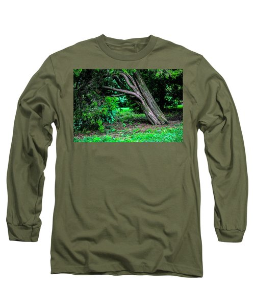 Long Sleeve T-Shirt featuring the photograph Portrait Of A Tree by Madeline Ellis