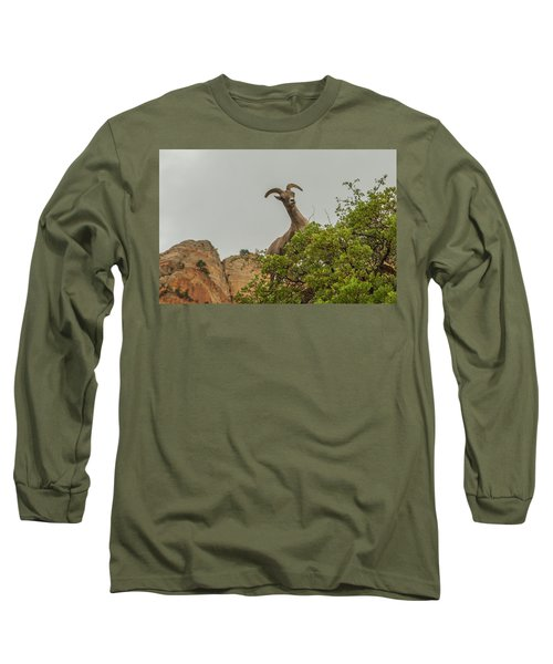 Posing For The Camera 2 Long Sleeve T-Shirt