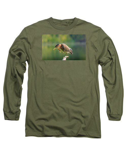 Long Sleeve T-Shirt featuring the photograph Posing Heron by Jerry Cahill