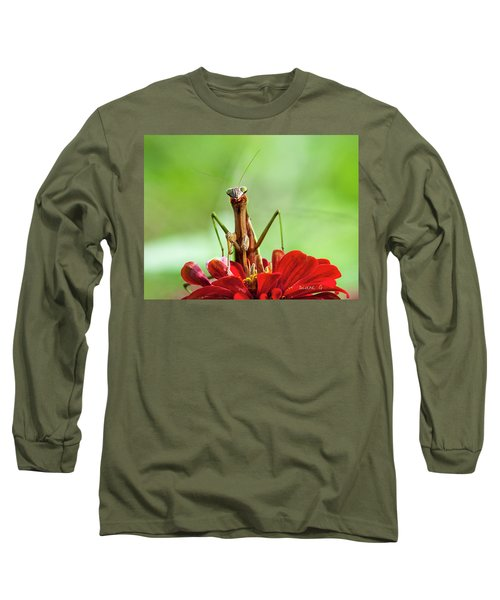 Praying Mantis On Zinnia Long Sleeve T-Shirt