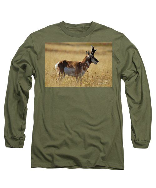 Pronghorn Antelope Long Sleeve T-Shirt by Cindy Murphy - NightVisions