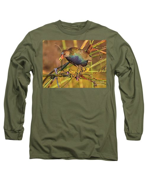 Purple Gallinule With A Treat Long Sleeve T-Shirt by Myrna Bradshaw