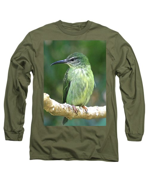Purple Honeycreeper Female Long Sleeve T-Shirt