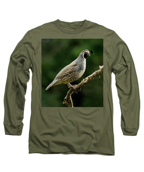Quail  Long Sleeve T-Shirt by Inge Riis McDonald