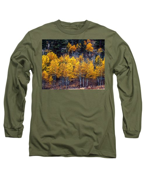 Aspen In Fall Colors In Eleven Mile Canyon Colorado Long Sleeve T-Shirt by John Brink