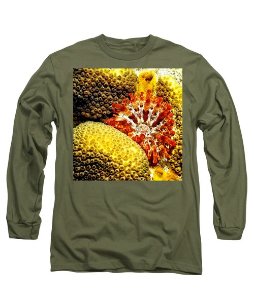Rare Orange Tipped Corallimorph - Fire In The Sea Long Sleeve T-Shirt