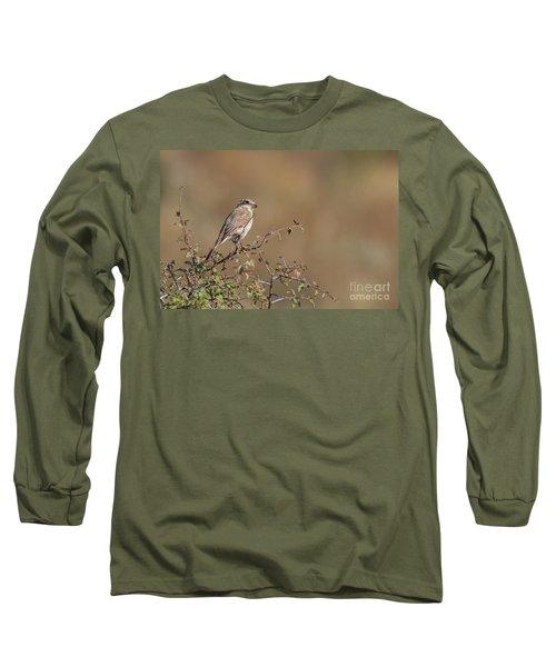Red-backed Shrike Juv. - Lanius Collurio Long Sleeve T-Shirt