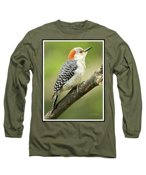 Red Bellied Woodpecker, Female On Tree Branch Long Sleeve T-Shirt
