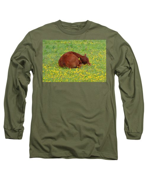 Red Calf In The Buttercup Meadow Long Sleeve T-Shirt