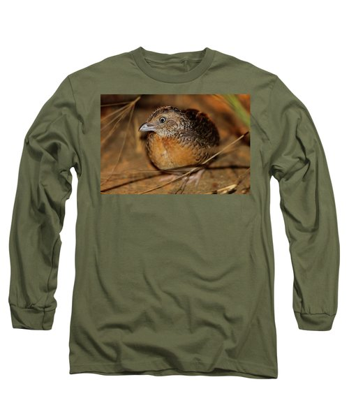 Red-chested Button-quail Long Sleeve T-Shirt