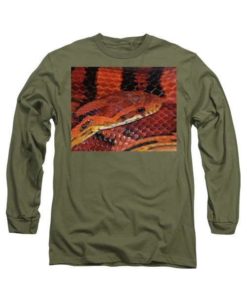 Red Eyed Snake Long Sleeve T-Shirt by Patricia McNaught Foster