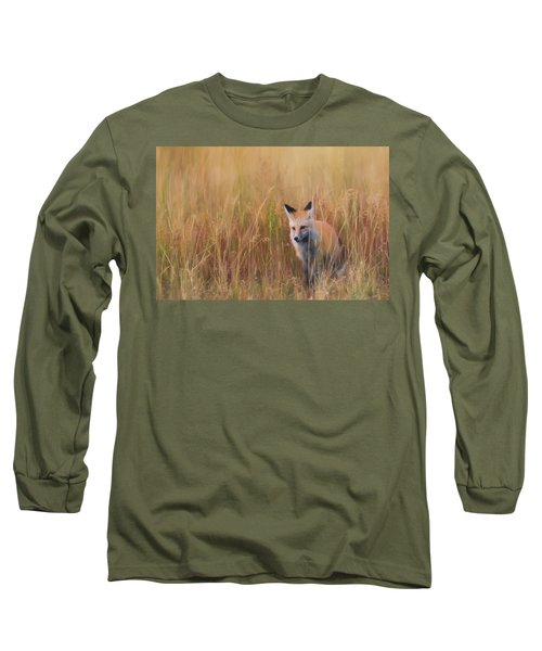 Long Sleeve T-Shirt featuring the photograph Red Fox Hunting  by Kelly Marquardt