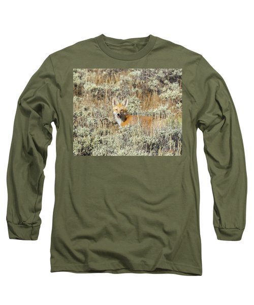 Red Fox In Sage Brush Long Sleeve T-Shirt