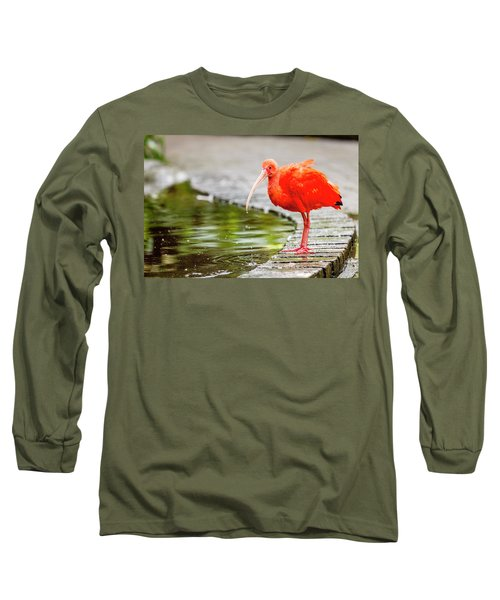 Long Sleeve T-Shirt featuring the photograph Red Ibis by Alexey Stiop