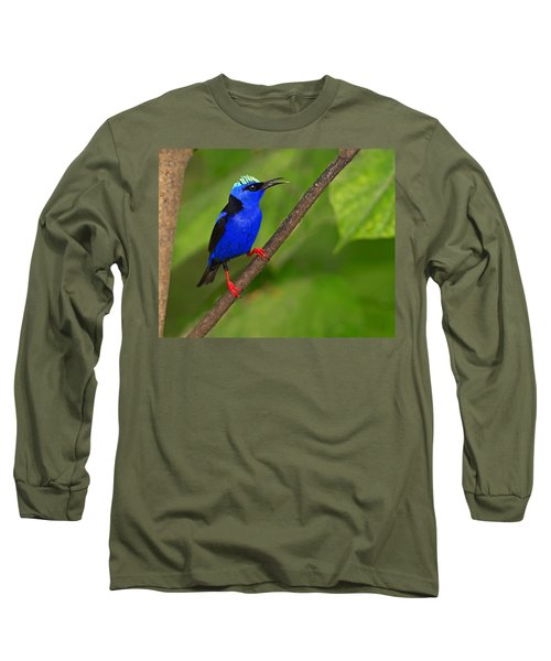 Red-legged Honeycreeper Long Sleeve T-Shirt