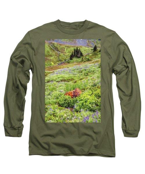 Red Rock Of Rainier Long Sleeve T-Shirt