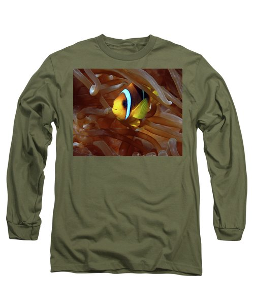 Red Sea Clownfish, Eilat, Israel 8 Long Sleeve T-Shirt