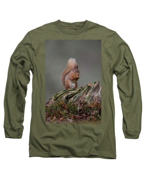 Red Squirrel Nibbling A Nut Long Sleeve T-Shirt