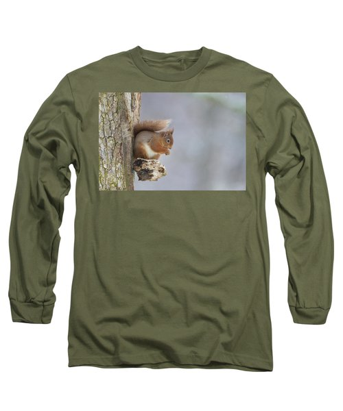 Red Squirrel On Tree Fungus Long Sleeve T-Shirt