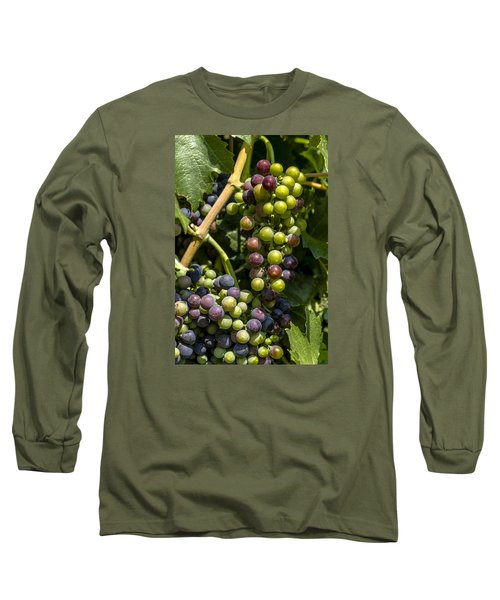 Red Wine Grape Colors In The Sun Long Sleeve T-Shirt