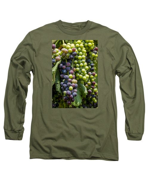 Red Wine Grapes In The Vineyard Long Sleeve T-Shirt
