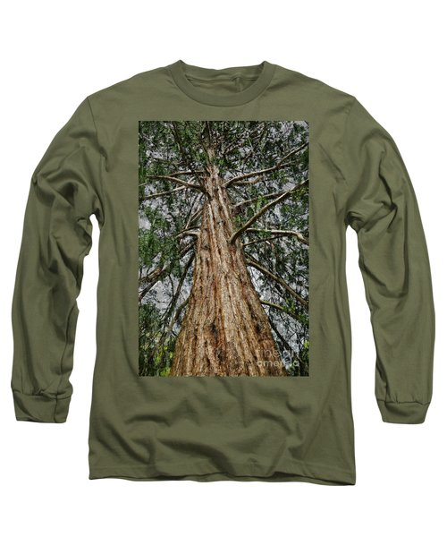 Redwood Reaches For The Sky Long Sleeve T-Shirt
