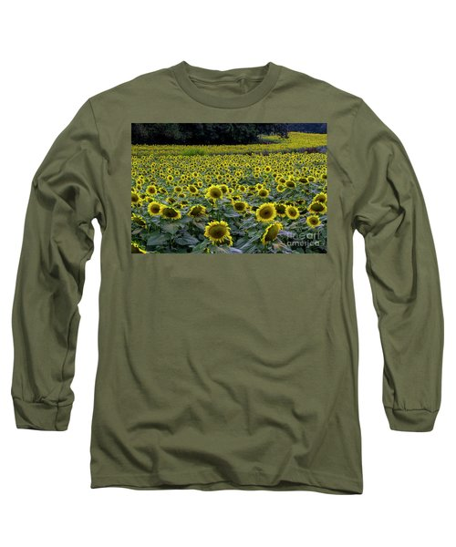 River Of Sunflowers Long Sleeve T-Shirt