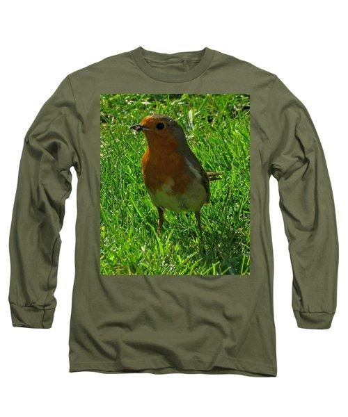 Robin1 Long Sleeve T-Shirt