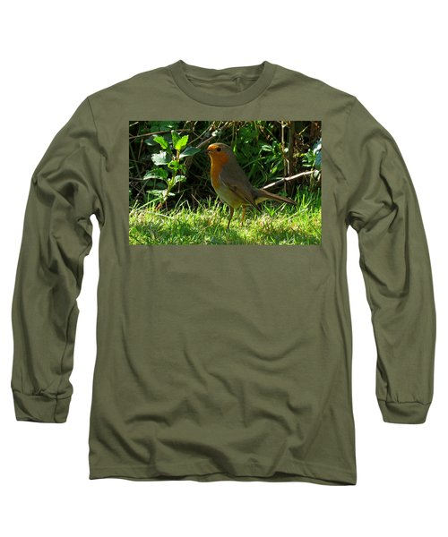 Robin2 Long Sleeve T-Shirt