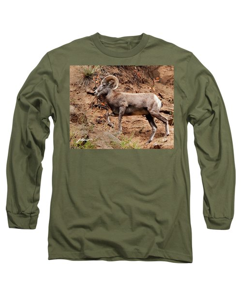Rocky Mt. Big Horn Sheep Long Sleeve T-Shirt