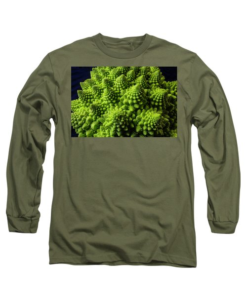 Romanesco Broccoli Long Sleeve T-Shirt by Garry Gay