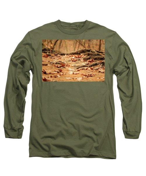Roots Along The Path Long Sleeve T-Shirt by Joni Eskridge