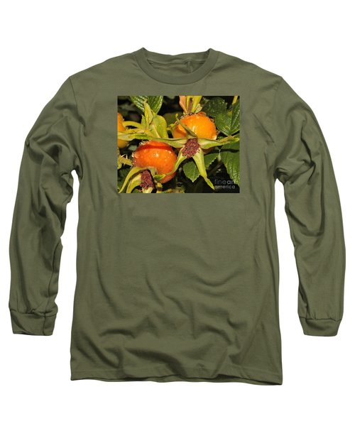 Rose Hips Long Sleeve T-Shirt by Debbie Stahre
