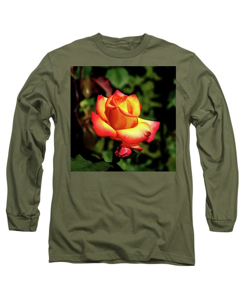 Rose To Remember Long Sleeve T-Shirt by Dale Stillman