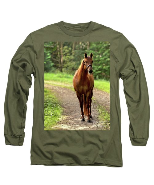 Rosey On The Road Long Sleeve T-Shirt by Michelle Twohig