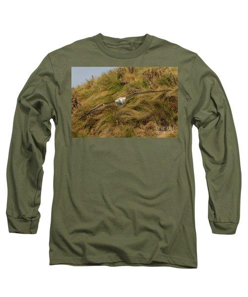Royal Albatross 2 Long Sleeve T-Shirt by Werner Padarin